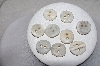 "**MBAMG #79-005  ""Vintage Lot Of Hand Carved Antler Buttons"""