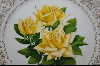 "MBA #8189  ""The Rose Of The Year Collection ""Irish Gold"" 1970"