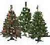 "**MBAMG #0031-H80827  ""Bethlehem Lights 3' Prelit Tree With 70 Dbl. Petal Reflector Lights"""