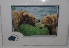 "MBA #1313-134   ""Howie Garber Yes, Mom Bear & Cub Alaska Matted Print"""