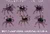 "+MBA #5608- 0066  ""Set Of (6) Sterling Spider Pendant Settings"""