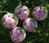 "+MBA #5614-132  ""1990's Set Of 12 Victorian Style Pink Rose Ornaments"""