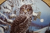 "MBA #3696   ""Grey Owl By Canidian Artist Terry McLean"