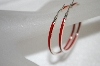 **MBA #20-495  Sterling Red Enamel Earrings