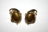 **MBA #25-445  Tafari Gold Tone Brown Acrylic Clip Back Earrings