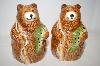 ** New Large Brown Bear & Fish Salt & Pepper Shakers