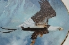 "1988  Ted Blaylock ""American Bald Eagle"" Collectors Plate"