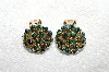 "MBA #E53-177   ""Warner Goldtone AB Crystal Rhinestone Clip On Earrings"""