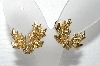 "MBA #E55-016    ""Bergere Gold Tone Clear Crystal Rhinestone Clip On Earrings"""