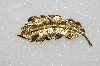 "+MBA #S51-517   ""Vintage Gold Plated Fany Leaf Pin"""