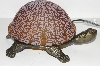 "+MBA #S30-092  ""2003 Brown Lighted Crackle Turtle Accent Lamp"""