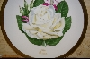 "**""Honor""  American Rose Society Plate 1980"